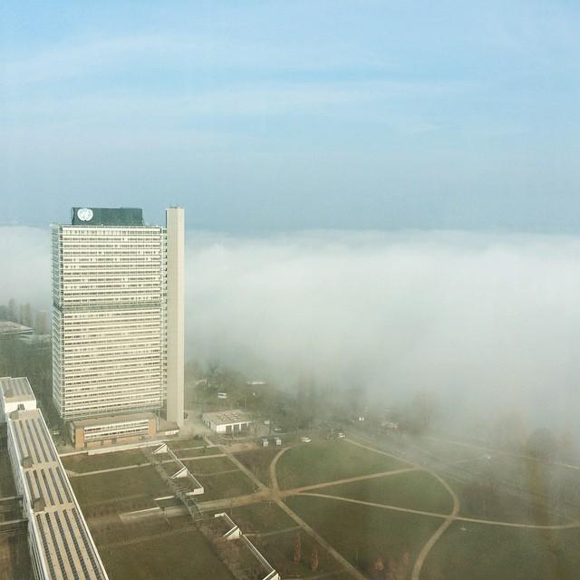 Vater Rhein hüllt sich in Nebel