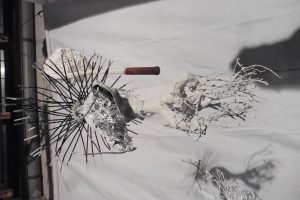 'Entwurzelung der Eisgeister' von Men Duri Melcher (c) as
