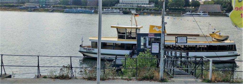 Rheinnixe am Ankerplatz Beueler Rheinufer